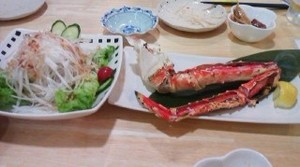 Tomakomai5_2